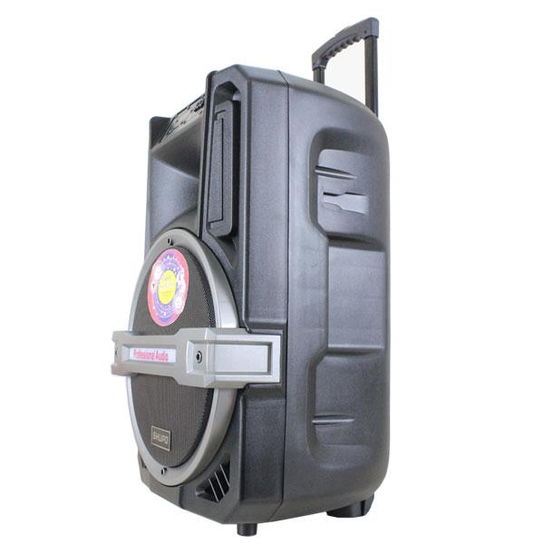 Các loại Loa vali kéo giá rẻ tại HCM - 1